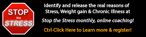 Stop The Stress online coaching sessions